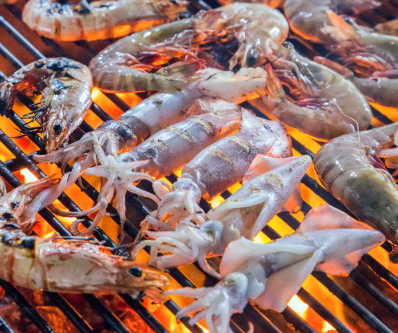 Benefits of the Gulf Shrimp